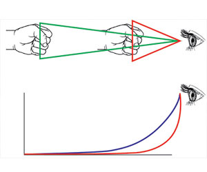 Arriba: cambio del tamaño aparente de un objeto en movimiento en función de su distancia al observador. El puño, cuyo tamaño real podría rondar los 12cm de alto, a medida que se acerca a la retina del observador adquiere cada vez mayor tamaño aparente o tamaño angular, cuya medida está dada por el ángulo derecho de los triángulos, que corresponde al ángulo que abarca el objeto en el ojo del observador. Abajo: crecimiento en el tiempo del tamaño aparente de dos objetos del mismo tamaño real que se acercan al observador a velocidades distintas. El eje horizontal indica el tiempo entre el momento en que ambos objetos se ponen en movimiento (extremo izquierdo) y el momento en que embisten al observador (extremo derecho). El eje vertical mide el tamaño aparente o angular que percibe el observador de los objetos que se le aproximan. La curva roja corresponde al objeto que se desplaza más rápido.