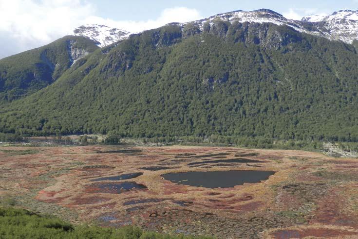Las turberas de Tierra del Fuego y el clima del pasado