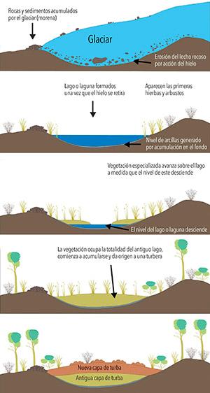 Diferentes estadios de una turbera en un paisaje de origen glacial.
