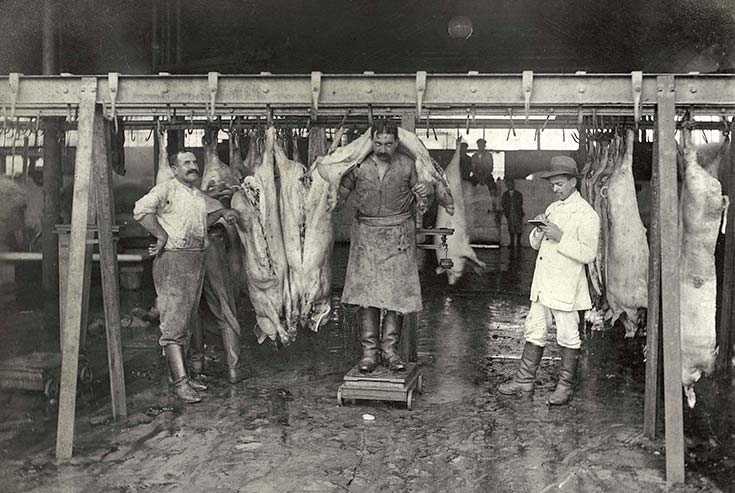 Mataderos de Liniers. Peso de porcinos, 1913. Colección HL Pezzimenti, CEITPA.