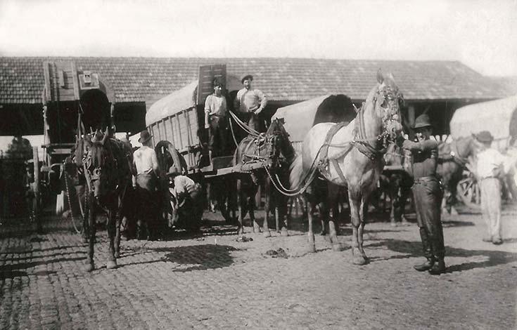 Corrales Nuevos. Salidas de carros con carne. Fotógrafos de Caras y Caretas, 1899, AGN.