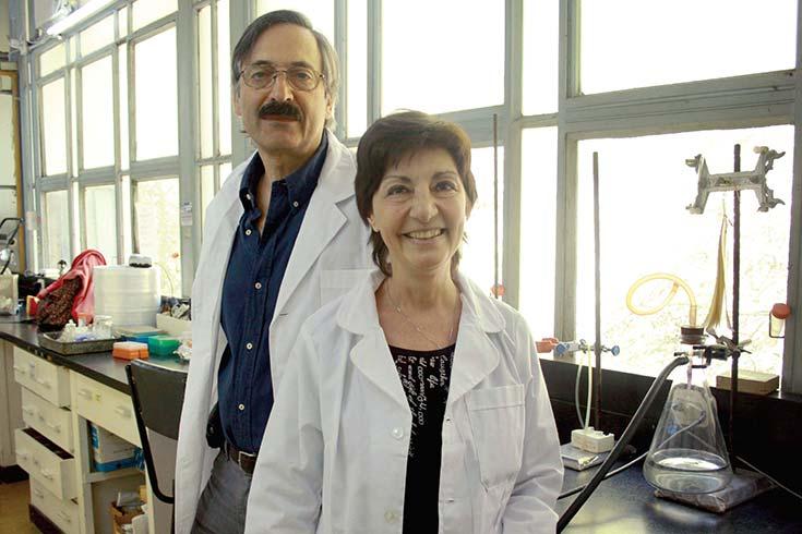 Terapia genética para tratar el melanoma en perros