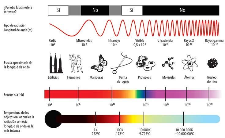 El espectro electromagnético. Recibe ese nombre el conjunto de las ondas electromagnéticas de todas las frecuencias, como lo indica la figura. Una parte de ese espectro se suele denominar espectro de radio e incluye las ondas de frecuencias entre 104 y 3 x 1012Hz, comprendidas las microondas. Nótese que en el gráfico la escala de frecuencias es logarítmica. Fuente http://commons.wikimedia.org/wiki/ EM_Spectrum_Properties_es.svg