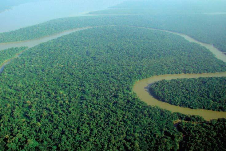 Vista aérea del río Solimões, tributario del curso superior del Amazonas. Foto twitter.com/cryforthearth