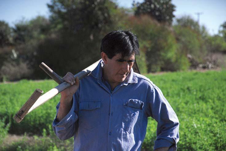Ocaso del pacto agropecuario moderno y auge de las agriculturas familiares