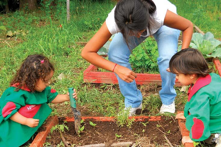 La huerta agroecológica como proceso de enseñanza-aprendizaje