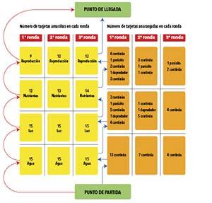 Esquema de la distribución de tarjetas en cada una de las tres rondas del juego con 15 participantes.