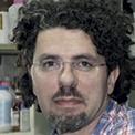 Julio Caramelo