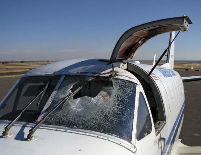 Resultado del impacto de una o más aves en el parabrisas de un avión en vuelo. El incidente ocurrió el 4 de noviembre de 2009 en Arizona. El piloto logró aterrizar con heridas faciales menores y un hombro amoretonado. Foto Aeropuerto Regional de Show Low, Arizona.