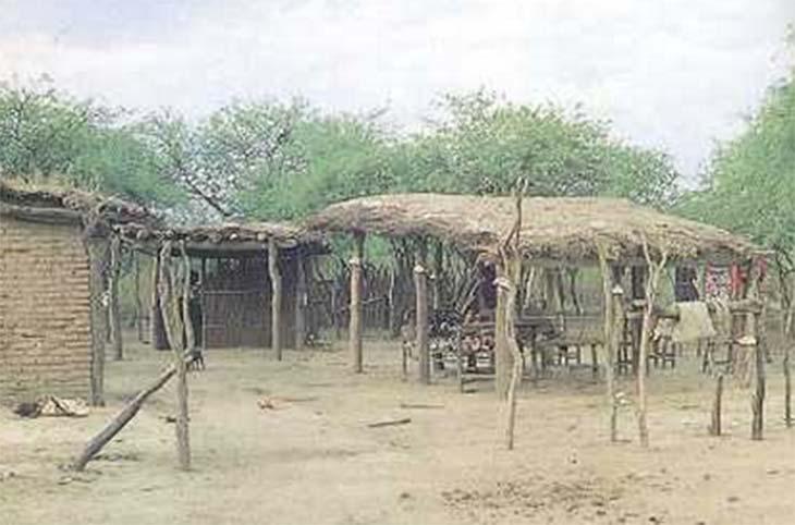 Rancho con techo de paja y paredes sin revoque propicio para albergar vinchucas. La existencia de otras instalaciones a su alrededor (cocinas, galerías) increments la posibilidad de contraer la infección.
