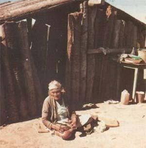 Vivienda característica de Formosa y, en general, de todo el NE argentino, construida con troncos de palma. Es también refugio de vinchucas.