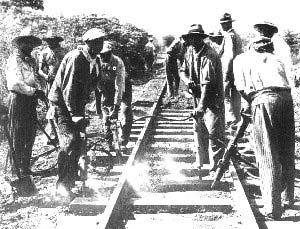 DURMIENTES DC QUEBRACHO FARA UNA NUEVA VíA TENDIDA EN EL MONTE, CA. 1924. FUENTE: ARCHIVO FOTOGRÁFICO DEL FERROCARRIL DE SANTA FE.