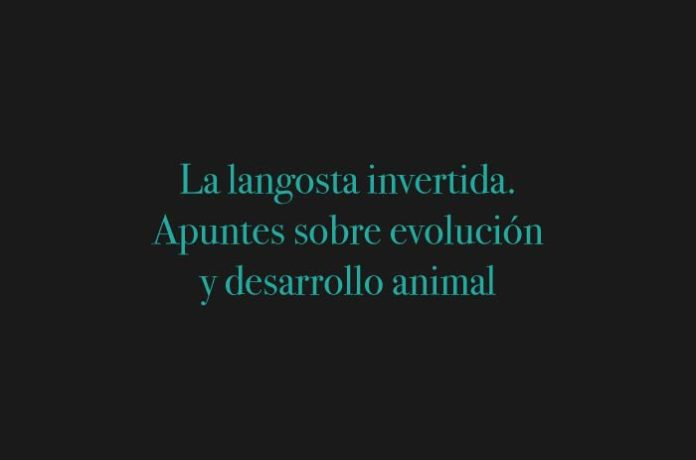 La langosta invertida. Apuntes sobre evolución y desarrollo animal