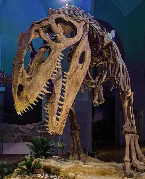 Reconstrucción del esqueleto de Giganotosaurus