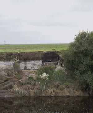 Vista del sitio Paso Otero 4 tomada en marzo de 2008