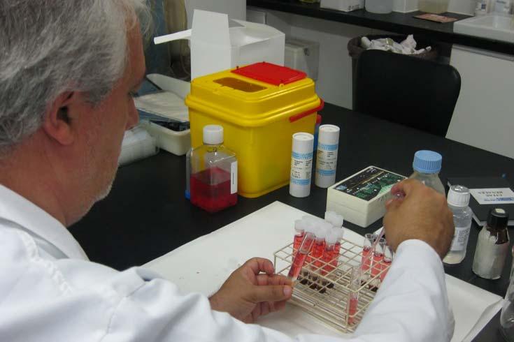 Inmunología: Moléculas con memoria