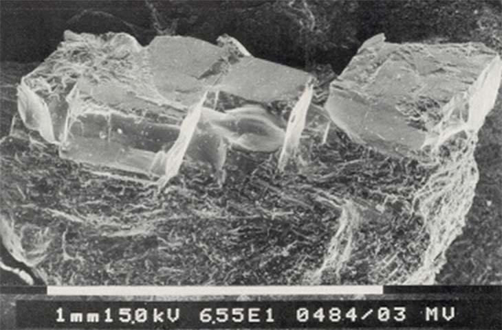 Fig. 5  Monocristales superconductores de La2-x SrxCuO4. (Microfotografía electrónica de barrido. Cortesía de E. Manghi y G. Polla, División Física del Sólido, Comisión Nacional de Energía Atómica.)