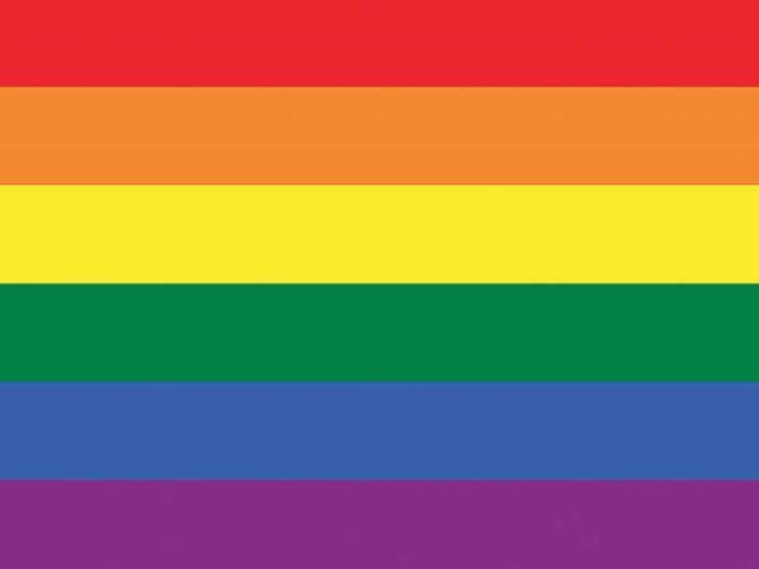 El activismo de ladiversidad sexualen la Argentina