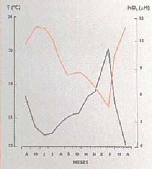Fig 6 Variación anual de temperatura (ocre) y de contenido de nitrato (negro) en las aguas superficiales de la región del Cabo Frío (media mensual). Observese que las aguas frias de surgencia alcanzan la capa superficial en los meses de la primavera y el verano australes, entre septiembre y marzo, y llevan con ellas gran cantidad de nutrientes.