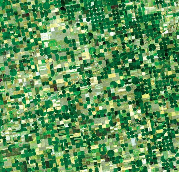Algunos desafíos para las ciencias agropecuarias