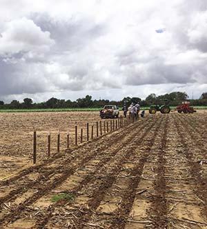 La expansión de la agricultura es causa de deforestación, con lo que se pierde la capacidad del bosque de absorber CO2 atmosférico.
