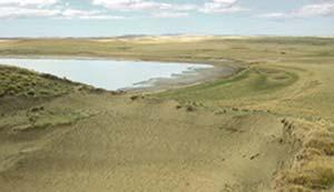 Sitio arqueológico Arturo 1, en una duna formada en la costa sur de la laguna Arturo, en la estepa fueguina del área de Río Grande. Es un sitio de superficie en el que se advierten huesos dispersos de varios animales, principalmente guanacos, desparramados por el viento, cuya acción terminó mezclando restos de distintas épocas.