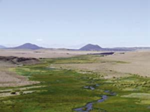 Un humedal de altura de la puna catamarqueña, sobre el río Punilla, en el área de Antofagasta de la Sierra. En los humedales se concentran los recursos necesarios para la vida humana en ese ambiente árido e inhóspito.