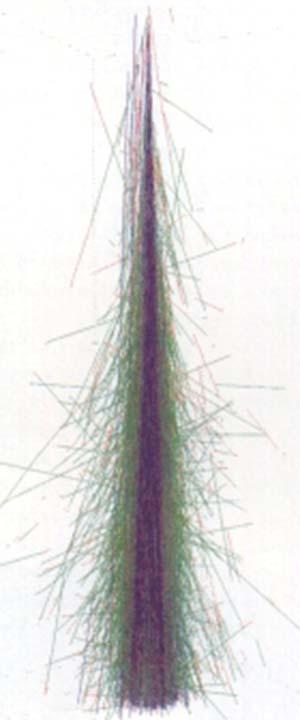 Fig 3 Simulación por computadora de un chubasco de radiación incidente sobre la tierra.