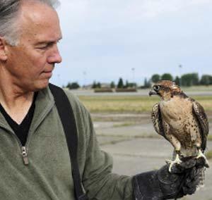 Un halcón peregrino (Falco peregrinus) y su entrenador en la base aérea Fairchild, en el estado norteamericano de Washington.