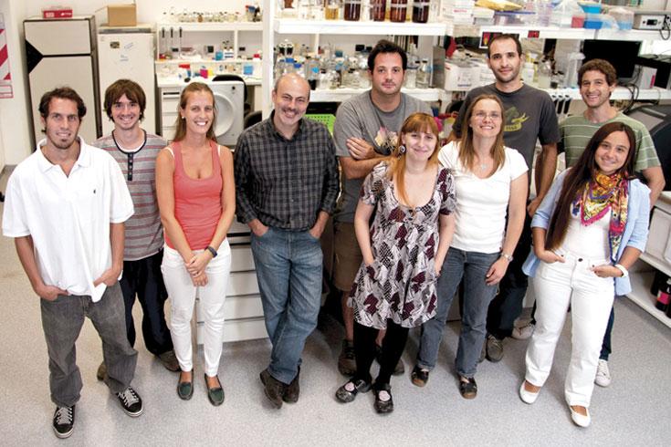 MicroARN: el mecanismo que permite a los vegetales ser más grandes y saludables