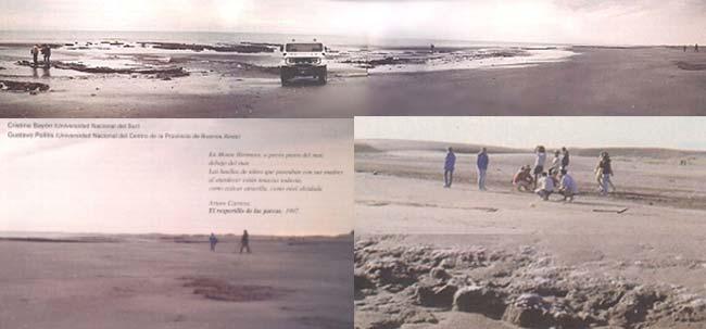 Fig 1. Vista de la playa donde se pueden observar los afloramientos del sitio Monte Hermoso.