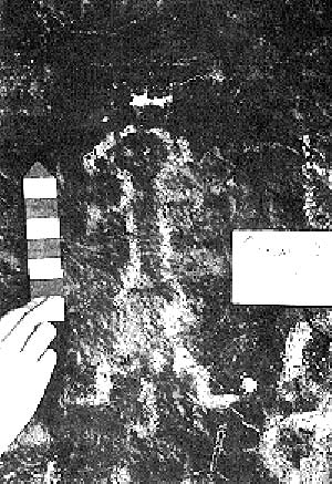 Antropomorfo pintado, Cueva Colmallo I, Río Negro.