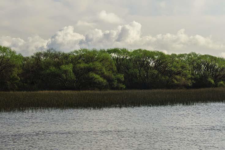 La evolución del delta del Paraná. Cambios geomorfológicos recientes (1775-2015)