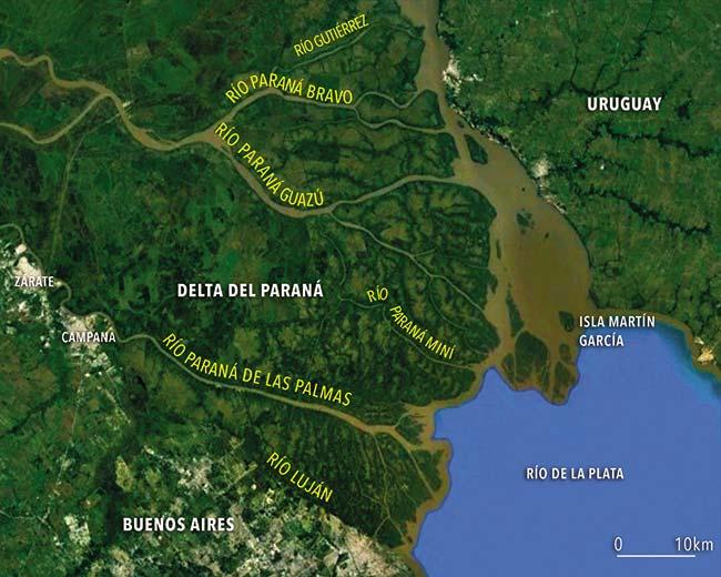 Imagen satelital del delta del Paraná. Google Earth