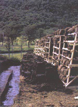 Aspecto de labores de extracción y secado de turba en Tierra del Fuego