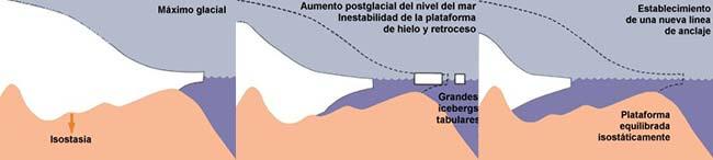 Fig 5. Modelo de inestabilidad de las plataformas de hielo como consecuencia de un ascenso del nivel del mar. a) Durante el máximo glacial, las plataformas de hielo se apoyan sobre el borde de la plataforma continental.  b) Durante el ascenso postglacial, las plataformas de hielo se desacoplan respecto de la tierra firme y por ablación retroceden los frentes de hielo. c) Esto sucede hasta que se estabiliza en un nuevo anclaje de las plataformas de hielo, en terreno continental (modificado de Anderson y Thomas, 1991).