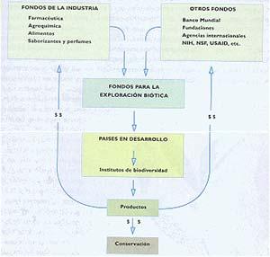 Fig 2 Esquema de operación del fondo para la exploración biótica