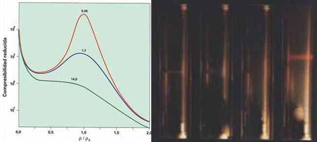 Fig. 2. Compresibilidad reducida del C02 en función de la densidad reducida. En cada isoterma se indica, en por ciento, cuánto difiere la temperatura respectiva de la temperatura crítica. (La compresibilidad reducida se mide como el cambio relativo de volumen por unidad de cambio de presión, por eso no tiene unidades.). Fig. 3. Opalescencia en C02 cuasicrítico producida por fluctuación de la densidad. Las imágenes muestran cómo se extiende progresivamente la opalescencia a medida que la temperatura se acerca a Tc. En la primera imagen la opalescencia comienza en la posición donde se encontraba el menisco líquido-vapor. En la última imagen, atraviesa la celda un haz rojo para facilitar la apreciación.