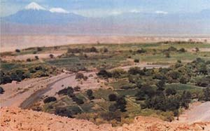El oasis de San Pedro de Atacama - Tomado de Tesoros de San Pedro de Atacama - Museo Chileno de Arte Precolombino