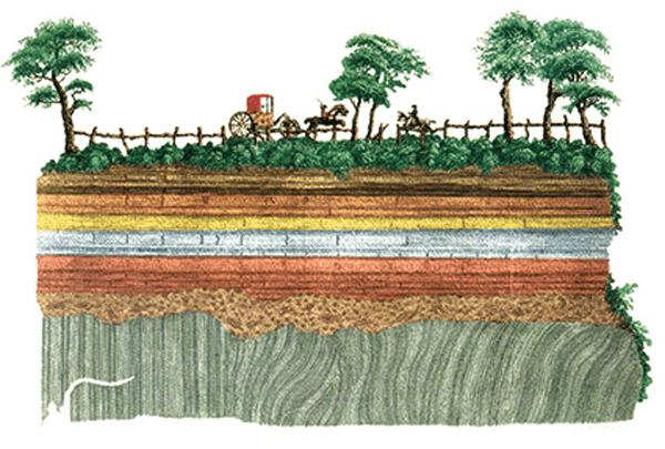 Los invertebrados fósiles y la escala geológica