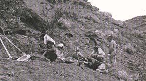 Figura 2. Un equipo de los museos de ciencias naturales de Buenos Aires, La Rioja y La Plata excava un yacimiento del triásico en la segunda de esas provincias. El procedimiento más adecuado de excavación depende del tipo de fósil y de roca.