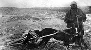 Mujer de etnia lakota, de las praderas norteamericanas, con un perro que arrastra el dispositivo llamado travois. Foto ca. 1900, State Historical Society of North Dakota, catálogo SHSND 1952-6303-2.