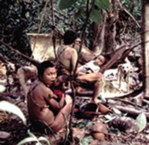 Perros en un campamento de cazadores-recolectores actuales de la etnia hoti, en la selva amazónica de Venezuela. Foto Gustavo Politis