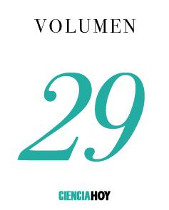 Volumen 29