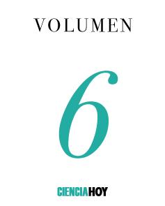 Volumen 6