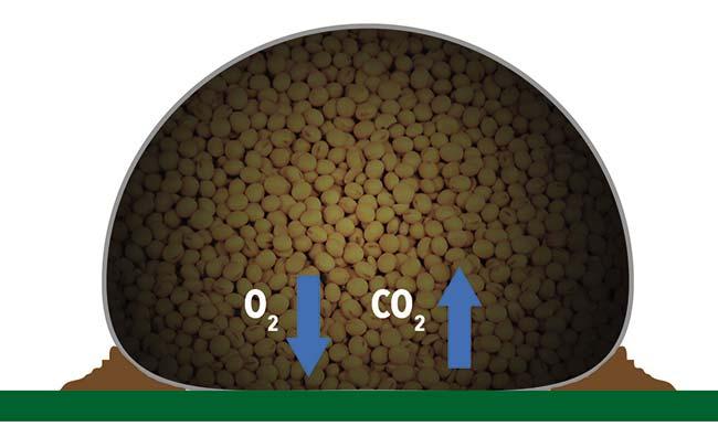 La respiración celular de los granos incrementa la proporción de dióxido de carbono y disminuye la de oxígeno en el aire que queda dentro de la bolsa hermética llena, lo que dificulta la acción de insectos y hongos. El plástico de la bolsa impide la entrada de luz y radiación ultravioleta.