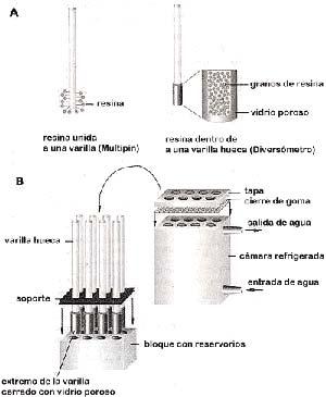 Fig. 5. Esquema del sistema Diversómero para la síntesis combinatoria en paralelo. En A) se indica la diferente relacion entre las varillas y la resina que existe entre este dispositivo y el sistema Multipin