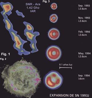 """Fig 1. Remanente de supernova en la región del cielo conocida como """"Ara"""", recientemente detectado con el radiotelescopio del Instituto Argentino de Radioastronomía (IAR). Los diferentes colores representan las distintas intensidades de la radioemisión. El rojo denota la mayor intensidad. Fig 2. Remanente de supernova conocido como Cassiopea A, observado con el Very Large Array (VLA), un sistema de radiotelescopios ubicado en Nuevo México, EE.UU. Las zonas rojas representan las regiones de emisión más intensa. Fig 3. Desarrollo del remanente de la supernova SN 1993J durante un período de un año, desde septiembre de 1993 hasta septiembre de 1994. Estas imagenes fueron tomadas en la banda de radio; las primeras Cuatro en 3,6cm de longitud de onda y la última en 6cm. Las zonas más intensas se representan en amarillo."""