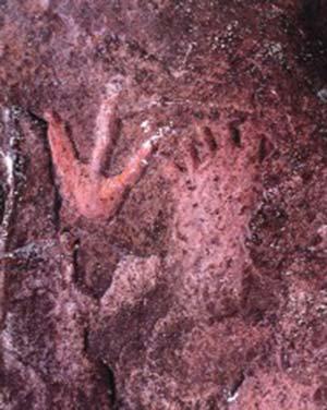 """Grabados rupestres en el sitio arqueológico Abrigo de Pilcaniyeu. En la foto se observan motivos del estilo """"pisadas"""" (tridígitos y pisada humana), de amplia distribución en la Patagonia. El arte de este sitio fue estudiado por R. Casamiquela (1986) y A. M. Llamazares (1982)."""