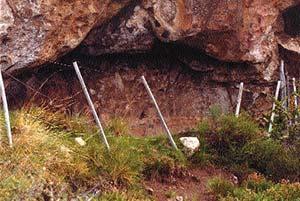 El conocimiento de los instrumentos utilizados  por una cultura para realizar grabados rupestres  permitirá inferir muchas de las características  de esa sociedad.